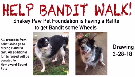 Help BANDIt Walk - Enter Raffle!